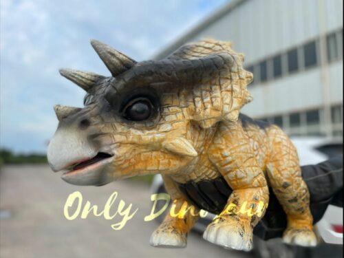 Realistic False Arm Baby Triceratops Dino Puppet in vendita sul Bthemonster.com