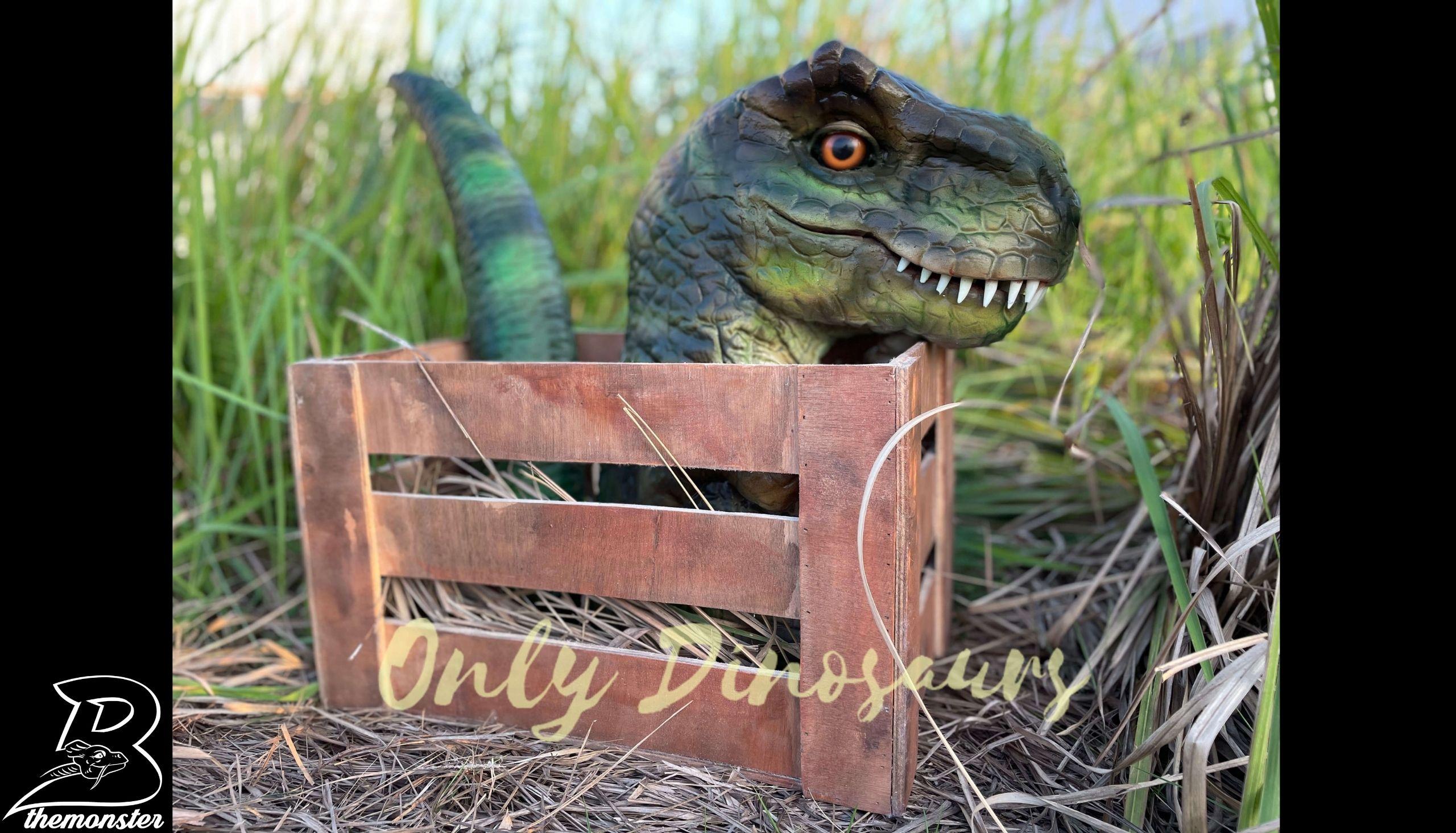 Adorable Crate Baby T-Rex Puppet in vendita sul Bthemonster.com