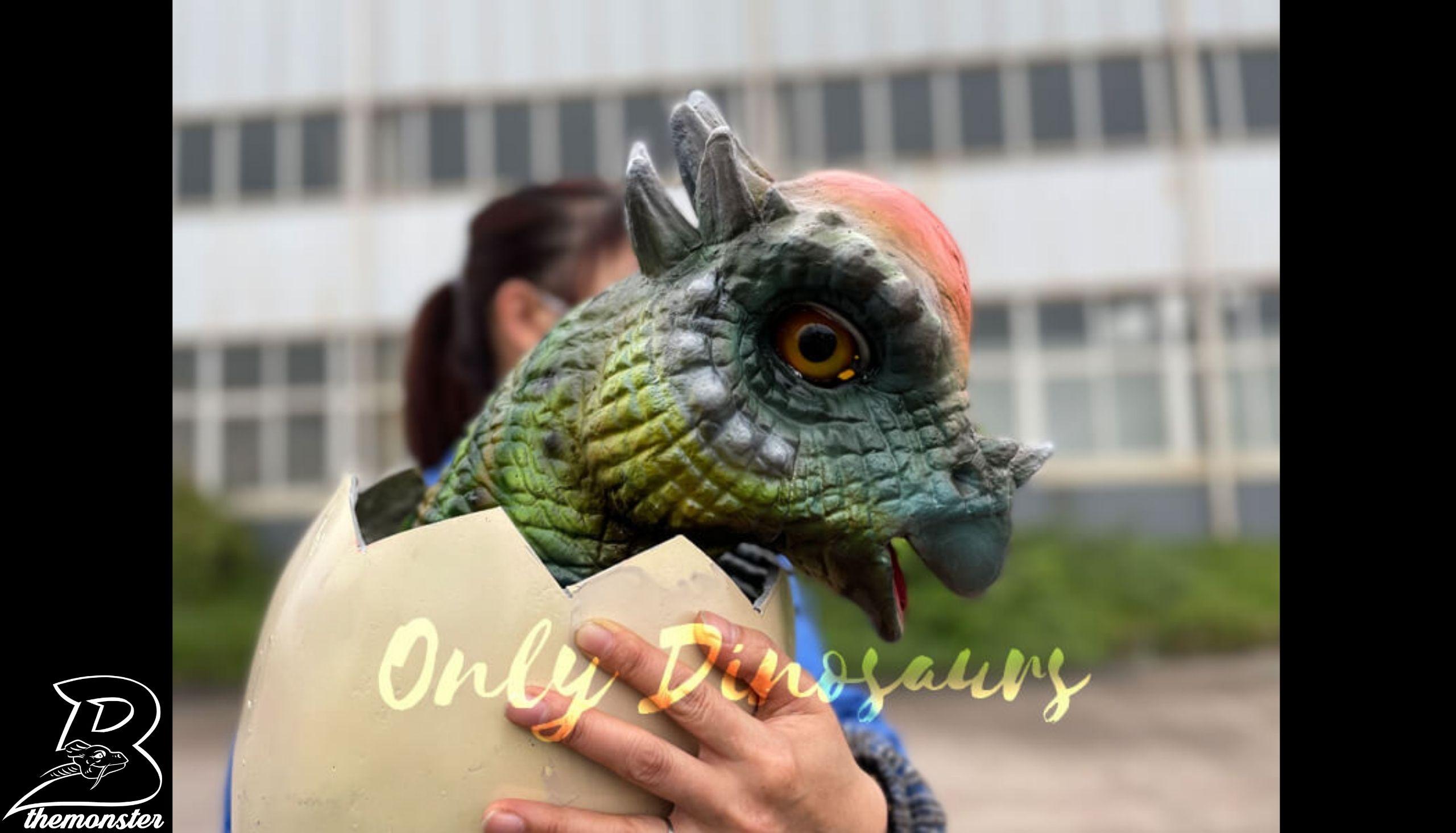 Attractive Pachycephalosaurus in Hatching Egg Hand Puppet in vendita sul Bthemonster.com