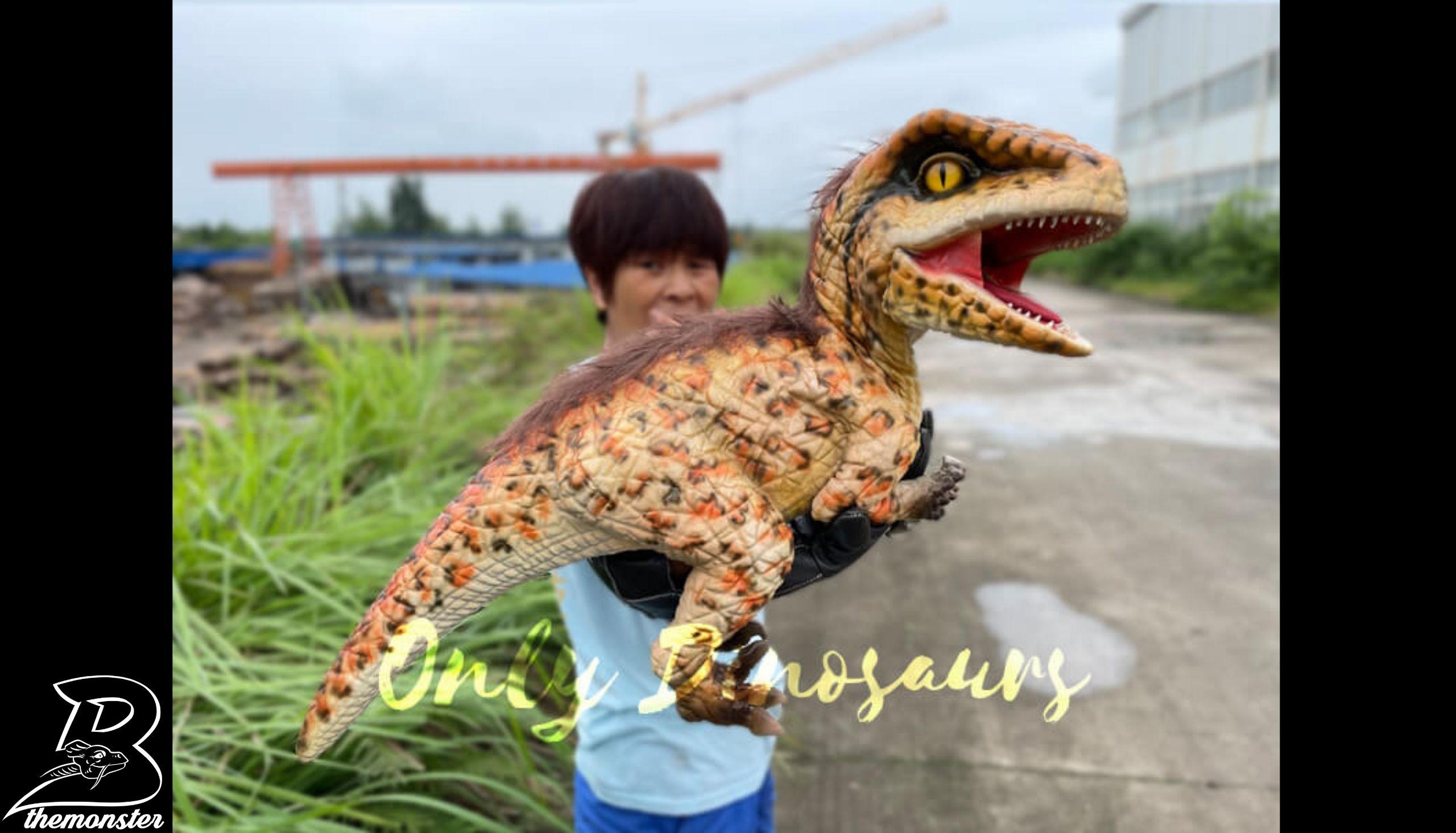Realistic Feathered Raptor False Arm Puppet in vendita sul Bthemonster.com