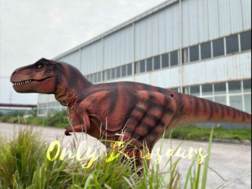 Lifelike Hidden Legs T-Rex Dinosaur Costume in vendita Bthemonster.com