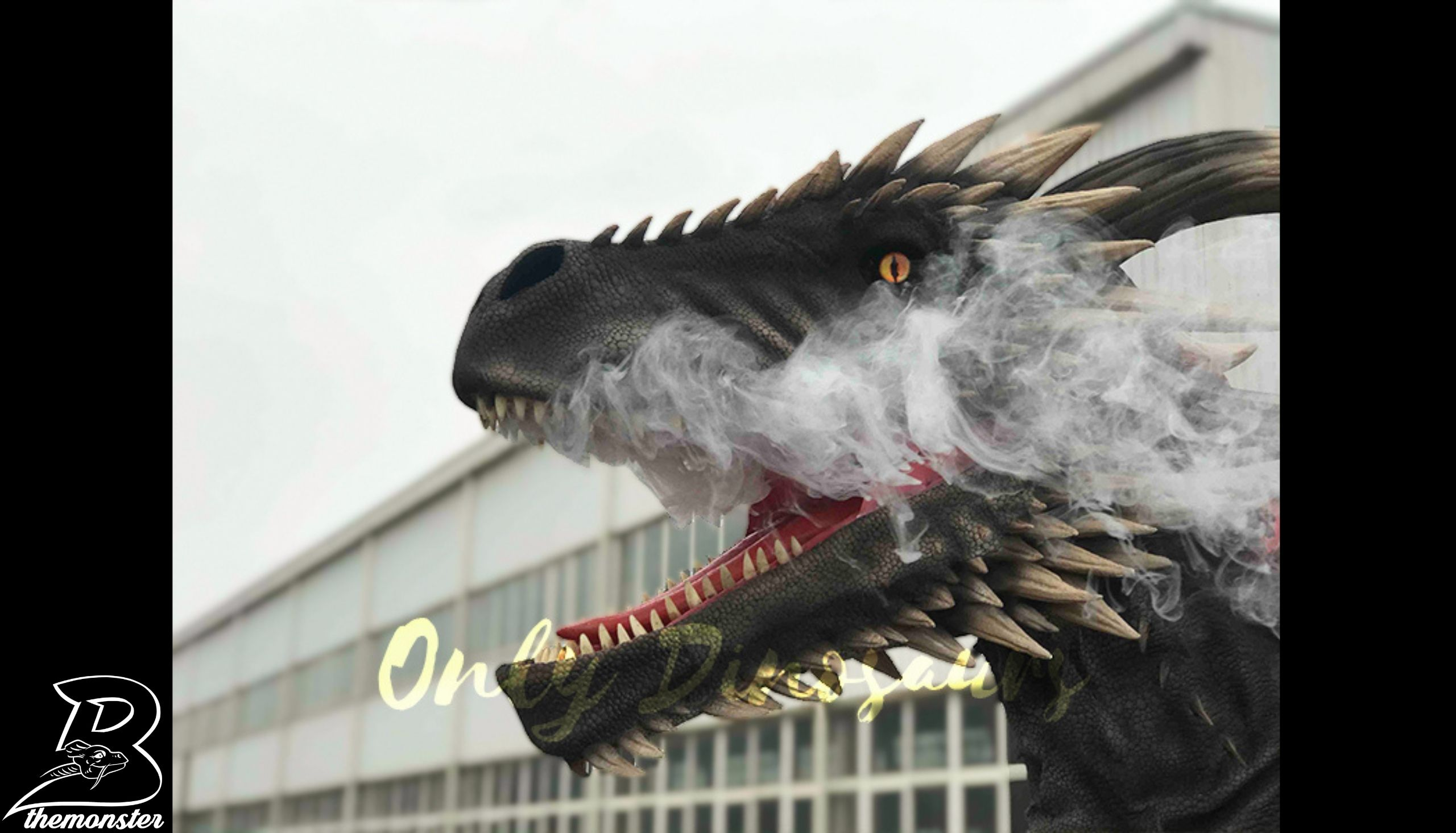Coolest Black Flying Dragon with hidden legs Costume Per Shop Bthemonster.com