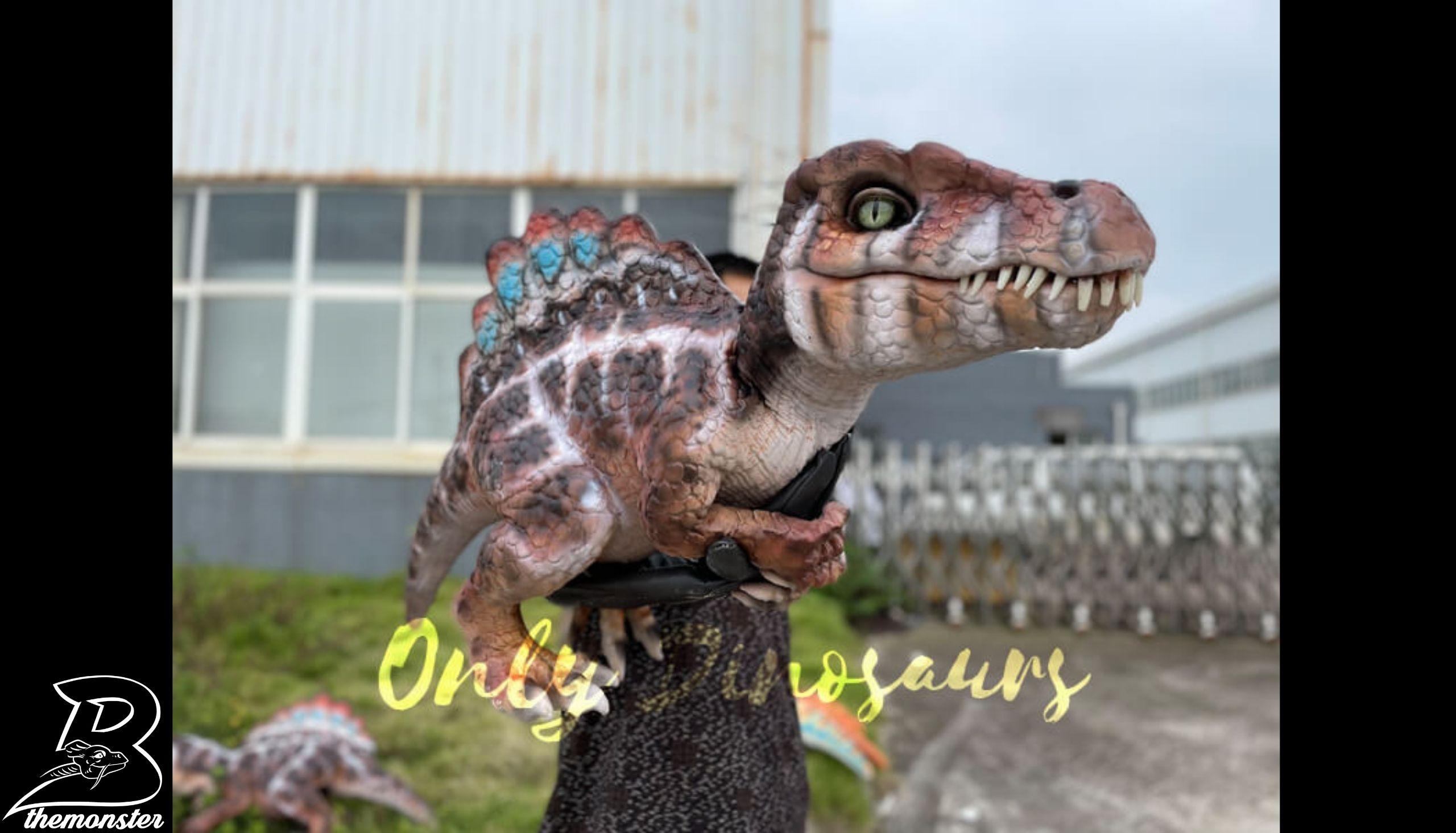 Adorable Baby Spinosaurus False Arm Puppet in vendita sul Bthemonster.com